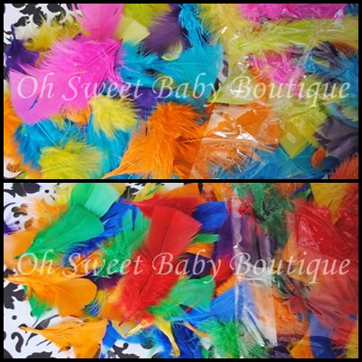 Turkey Feathers Large Assortment