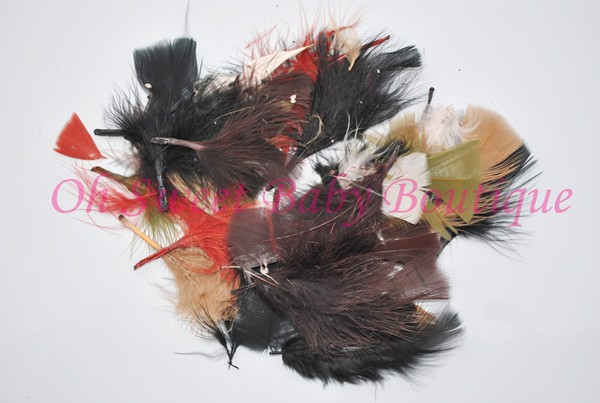 Natural Turkey Feathers